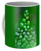 Leaves Rising Coffee Mug