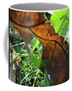 Leaves Still Coffee Mug
