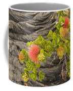 Lehua Flower Coffee Mug