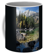 Leigh Lake Cove Coffee Mug