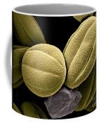 Lemon Balm Coffee Mug