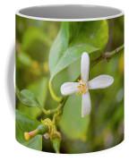 Lemon Blossoms 1 Coffee Mug