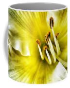 Lemon Cream Daylilly Coffee Mug