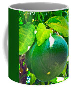 Lemon Or Lime Coffee Mug