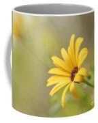 Lemon Symphony Dreams 5 Coffee Mug