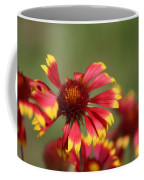 Lemon Yellow And Candy Apple Red Coneflower Coffee Mug