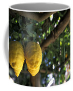 Lemons Hanging From A Lemon Tree Coffee Mug by Richard Nowitz