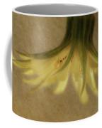 Lempa Coffee Mug