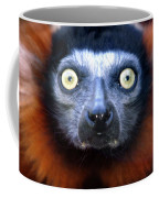 Lemur Glare Coffee Mug