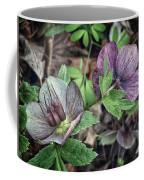 Lenton Rose Coffee Mug