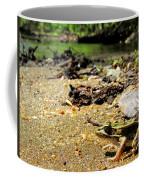 Leopard Frog Landing Coffee Mug