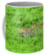Leopard On The Move Coffee Mug