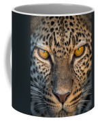 Leopard Panthera Pardus, Ndutu Coffee Mug