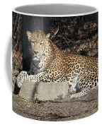 Leopard Relaxing Coffee Mug