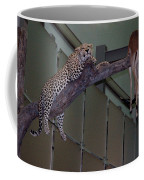 Leopard Tree Cat Preying Coffee Mug