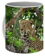 Leopard With Piercing Eyes Coffee Mug