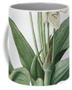 Les Liliacees Coffee Mug