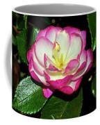 Leslie Ann - Sasanqua Camellia 006 Coffee Mug