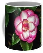 Leslie Ann - Sasanqua Camellia 007 Coffee Mug