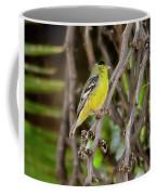 Lesser Goldfinch H57 Coffee Mug