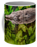 Let Sleeping Gators Lie Coffee Mug