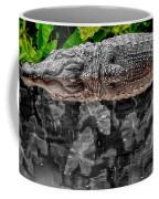 Let Sleeping Gators Lie - Mod Coffee Mug