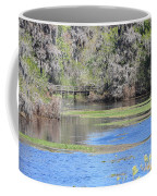 Lettuce Lake With Bridge Coffee Mug