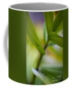 Levels Coffee Mug