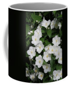 Lewis' Mock-orange Coffee Mug