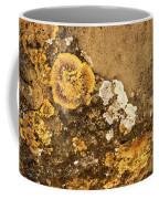 Lichen On The Piran Walls Coffee Mug