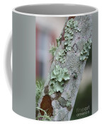 Lichens 2 Coffee Mug