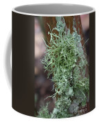 Lichens 6 Coffee Mug