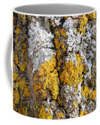 Lichens On Tree Bark Coffee Mug