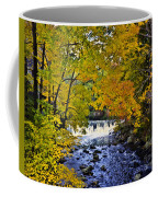 Lidia's Falls Coffee Mug