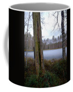 Liesilampi 2 Coffee Mug