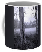 Liesilampi 4 Coffee Mug