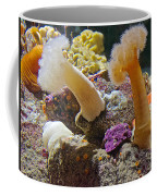 Life Under The Sea In Monterey Aquarium-california Coffee Mug