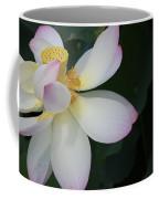 Light And Dark Coffee Mug