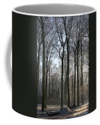 Light And Swadows Coffee Mug