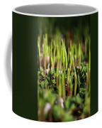 Light Of Spring Coffee Mug