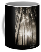 Light Through Forest Coffee Mug