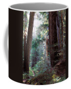 Lighting The Path Coffee Mug