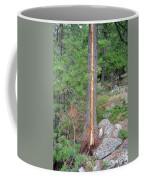 Lightning Strike On Tree Coffee Mug