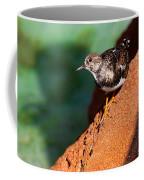 Lil Bird Coffee Mug