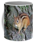 Lil Chipmunk Coffee Mug