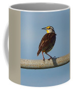 Lil Meadowlark Coffee Mug