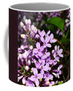 Lilac Bush In Spring Coffee Mug