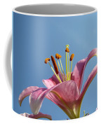 Lilies Art Prints Pink Lily Flower Giclee Art Prints Baslee Troutman Coffee Mug