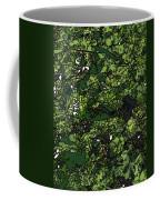 Lilies Of The Lake Coffee Mug