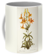 Lilium Penduliflorum Coffee Mug by Pierre Joseph Redoute